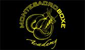 Boxe Academy, Karate,  Judo, Thaiboxe, Krav Maga, Tennis, Calcetto, Palestra